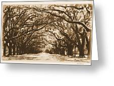 Sunny Southern Day With Old World Framing Greeting Card