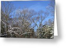 Sunny Winter Sky Greeting Card