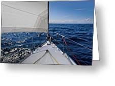 Sunny Yacht Bow Greeting Card