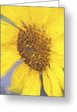 Sunny Yellow Greeting Card