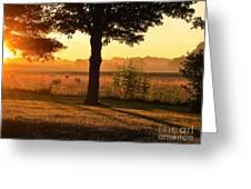 Sunrise 365 13 Greeting Card