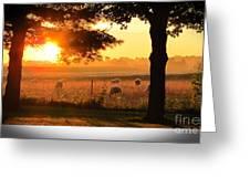 Sunrise 365 15 Greeting Card