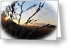 Sunrise 365 2 Greeting Card
