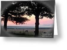 Sunrise 365 35 Greeting Card