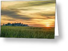Sunrise At Little Neck Greeting Card