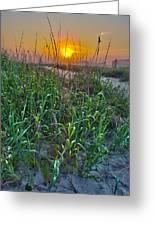 Sunrise At Myrtle Beach Greeting Card