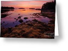 Sunrise At Tenants Harbor Greeting Card