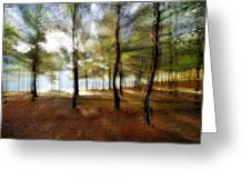 Sunrise At The Magic Forest Greeting Card