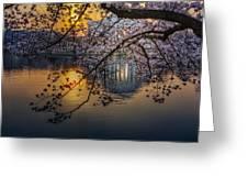 Sunrise At The Thomas Jefferson Memorial Greeting Card