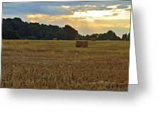 Sunrise At The Wheat Field Greeting Card