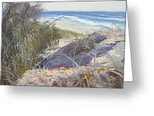 Sunrise Beach Dunes Sunshine Coast Qld Australia Greeting Card
