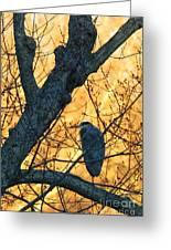 Sunrise By James Figielski Greeting Card