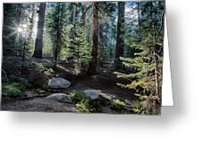 Sunrise Creek Greeting Card