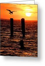 Sunrise Descent - Outer Banks Ocracoke Greeting Card