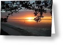 Sunrise Flight Greeting Card