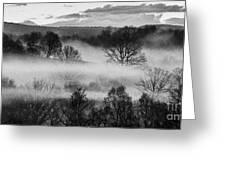 Sunrise Fog Black And White Greeting Card