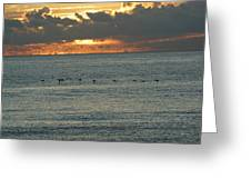 Sunrise In Florida Riviera Greeting Card