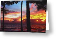 Sunrise In Queensland 1 Greeting Card