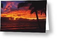 Sunrise In Queensland 2 Greeting Card