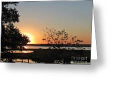 Sunrise Is Calling On Nc Waterway  Greeting Card