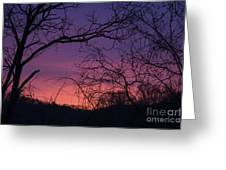 Sunrise January 21 2012 Greeting Card