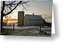 Sunrise On Birch Greeting Card