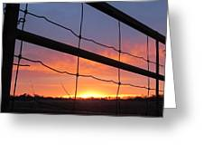 Sunrise On Fence Greeting Card