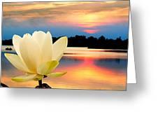 Sunrise On Lotus Lillie Greeting Card