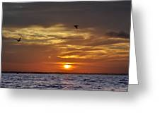 Sunrise On Tampa Bay Greeting Card
