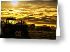 Sunrise On The Deere Greeting Card