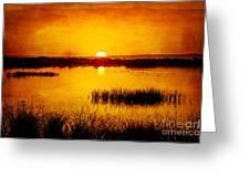Sunrise On The Pond Greeting Card