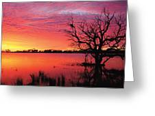 Sunrise Over Coongee Lakes Greeting Card