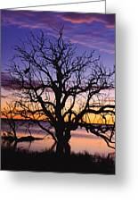 Sunrise Over Coongee Lakes With Moon.  Greeting Card