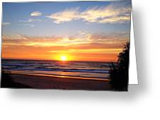 Sunrise Over Dolphins Greeting Card