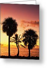 Sunrise Over Florida Bay Greeting Card