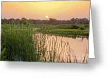 Sunrise Over The Marsh Greeting Card