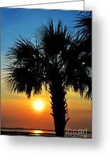 Sunrise  Palm Tree Greeting Card