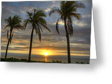 Sunrise Palms Greeting Card