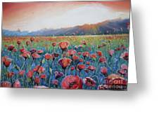 Sunrise Poppies Greeting Card by Andrei Attila Mezei