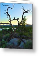 Sunrise Prescott Arizona Greeting Card