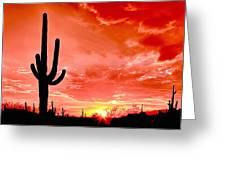 Sunrise Saguaro National Park Greeting Card