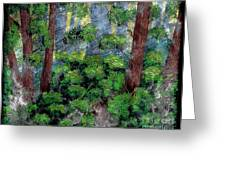 Suns Rays - Forest - Steel Engraving Greeting Card