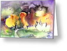 Sunset 49 Greeting Card