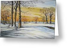Sunset And Snow Sold Greeting Card