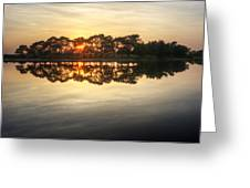 Sunset And Trees On Water Greeting Card