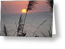 Sunset At 188 Mm Focal Length Greeting Card