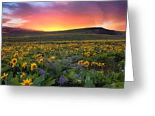 Sunset At Columbia Hills State Park Greeting Card