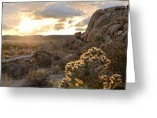 Sunset At Joshua Tree National Park Greeting Card