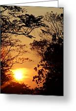 Sunset At Jungle Greeting Card