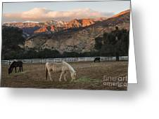 Sunset At Rancho Oso Greeting Card